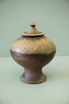 "Vase 7 (ART 319 ""Print or Die"" Assignment)"