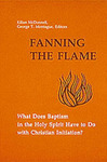 Fanning the Flame : What Does Baptism in the Holy Spirit Have to Do with Christian Initiation?